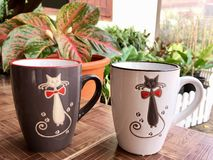 Black cat and white cat royalty free stock image