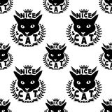 Black cat on a white. Stock Photography