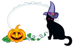 Black cat in witch hat and Halloween pumpkin. Royalty Free Stock Photo
