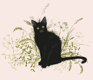 Black cat in a withered grass. Vector illustration. Hand drawing of a black cat in a withered grass. On a white background Stock Photo