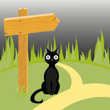 Black cat and wooden arrow on the road Stock Image
