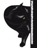 Black cat with yellow eyes Stock Photos