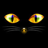 Black Cat with Yellow Golden Eyes, Nose and White Whisker. Halloween Day. Vector Illustration.  on white Background.  Royalty Free Stock Photography