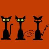 Black cats Royalty Free Stock Photography