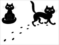 Black cats. Royalty Free Stock Photos