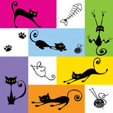 Black cats Royalty Free Stock Photo