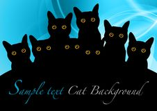 Black cats. On the blue background Stock Photography