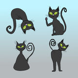 Black cats Stock Photos