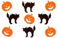 Black cats and jack o lanterns stock image