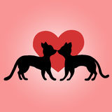 Black cats in love Stock Images