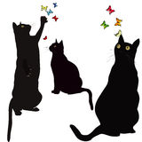 Black cats silhouettes and colorful butterflies Stock Photography