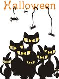 Black cats and spiders Stock Images