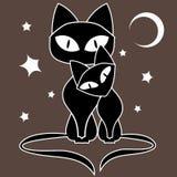 Black Cats Royalty Free Stock Photos