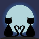 Black cats under moon Royalty Free Stock Image