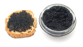 Black Caviar Stock Photo
