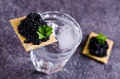 Black caviar on a cracker. On a dark background. Selective focus royalty free stock photos