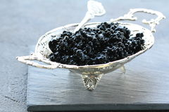Black caviar -  delicacy appetizer Royalty Free Stock Images