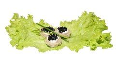 Black caviar on lettuce Stock Images
