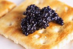 Black caviar over cracker Royalty Free Stock Photography