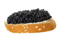 Black caviar served on bread Stock Images