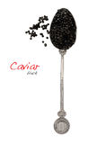 Black caviar in spoon Royalty Free Stock Photo
