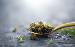 Black caviar in a spoon on dark background. Natural sturgeon black caviar closeup. Delicatessen stock photography