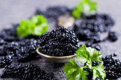 Black caviar in the spoon Royalty Free Stock Photo