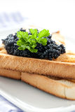 Black caviar on toast Royalty Free Stock Photography