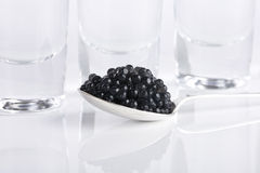 Black caviar and vodka. Silver spoon of black caviar and three glass of vodka over white background royalty free stock photo