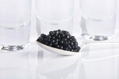 Black caviar and vodka Royalty Free Stock Photo