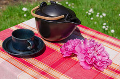 Black ceramic teapot and cup with peony on table. Black ceramic teapot and cup with peony blossom on table outdoor Stock Images