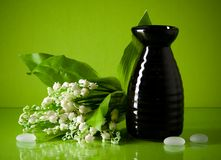 Black ceramic vase and lily of the valley on green Stock Images