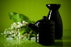 Black ceramic vase and sauce-boat on green Royalty Free Stock Image