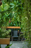 Black chair in the garden for relax. Classic garden with black chair on patio terrace in house Royalty Free Stock Photos