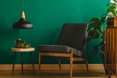 Black chair in retro room. Interior with green walls, black lamp, stool, teapot, cupboard and plant stock photo