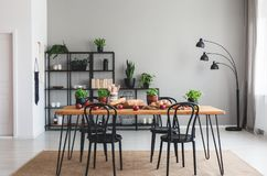 Black chairs and wooden table with food on brown carpet in grey dining room interior stock photography