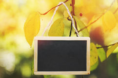 Black chalk board hanging from a tree on yellow, bright background Royalty Free Stock Photography