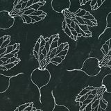 Black Chalk Board. Seamless Background of Ripe Beets. Endless Pattern of Beetroot with Top Leaves. Fresh Vegetable Salad. Hand Dra stock illustration