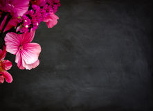 Black chalkboard and flowers Stock Photos