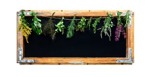 Black chalkboard with herbs. stock photo