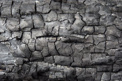 Black charcoal texture background. Burnt wood texture Stock Images