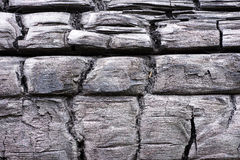 Black charred wood pattern. Burned tree  texture background. Stock Photo