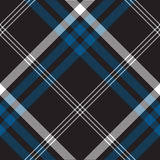 Black check seamless fabric texture. Vector illustration Royalty Free Stock Photography