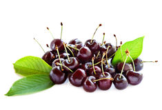 Black cherries. Royalty Free Stock Images