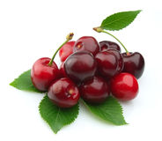 Black cherries Royalty Free Stock Images