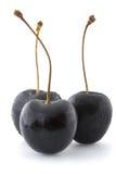 Black Cherries Stock Photos