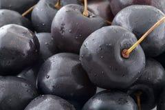 Black Cherries Stock Images