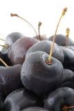 Black Cherries Royalty Free Stock Photo