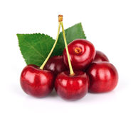 Black cherries Stock Images