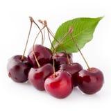 Black Cherries Stock Photography